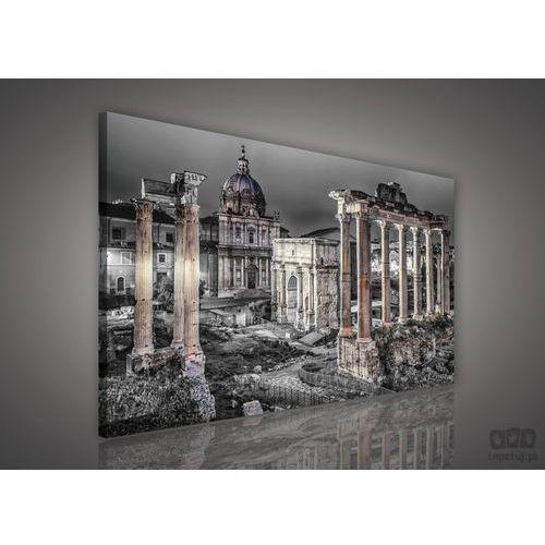 Obraz Forum Romanum - Rzym PP606O1