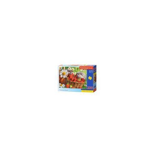 Puzzle 200 elementów - deser truskawkowy - poznań, hiperszybka wysyłka od 5,99zł! marki Castor