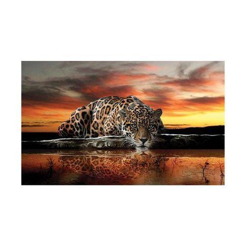 Kanwa jaguar o zachodzie 100 x 75 cm marki Consalnet