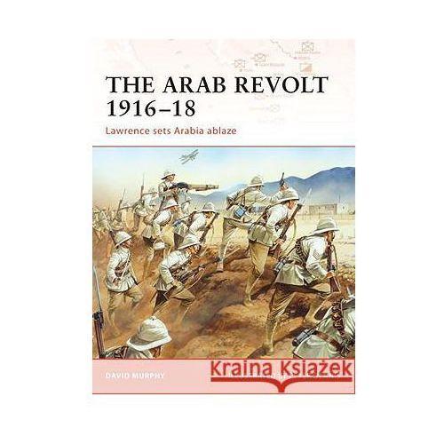 Arab Revolt 1916-18 (9781846033391)