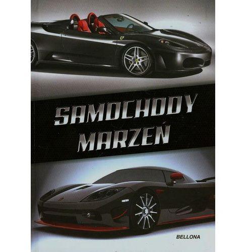 Samochody marzeń (9788311129764)