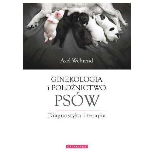 Ginekologia i położnictwo psów Diagnostyka i terapia, oprawa twarda
