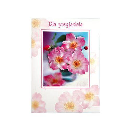 Karnet z kopertą. Dla przyjaciela (5907564006545)