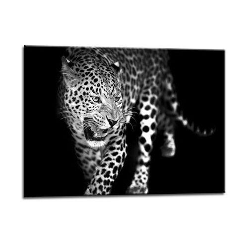 Obraz glasspik lampart 70 x 100 cm marki Styler