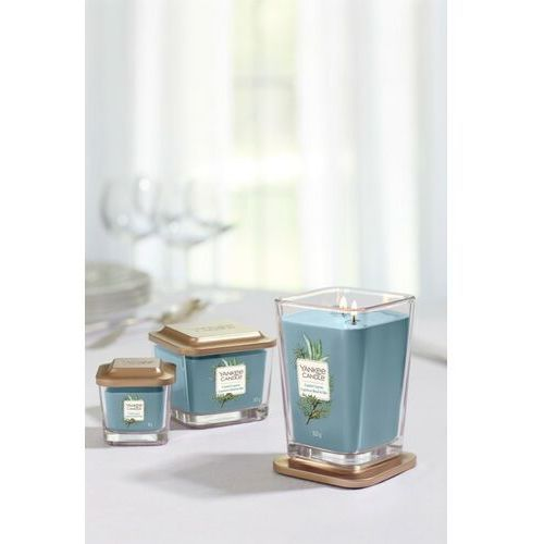 Yankee candle Średnia kwadratowa świeca z trzema knotami coastal cypress