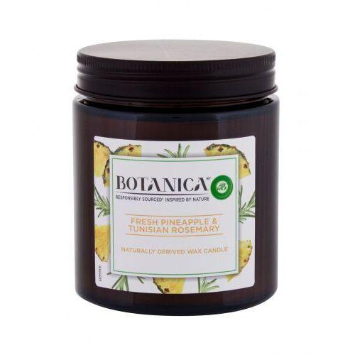 Air wick botanica fresh pineapple & tunisian rosemary świeczka zapachowa 205 g unisex (5999109541154)