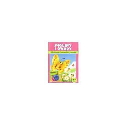 Kolorowanka. Rośliny i owady (5905184050108)