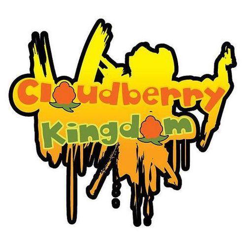 Cloudberry Kingdom - gra PC
