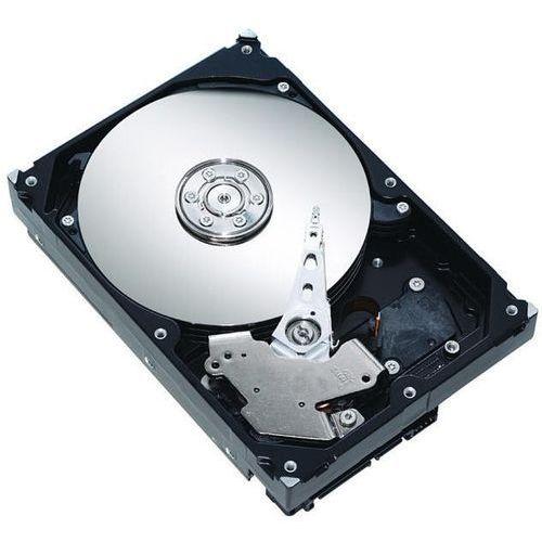 Dysk HDD SATA 3000 GB do DVR, 3000 GB