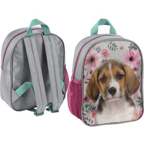 Plecak przedszkolny dog marki Paso