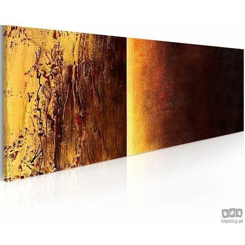 Obraz ręcznie malowany Dwie faktury, A0-0101-29MK