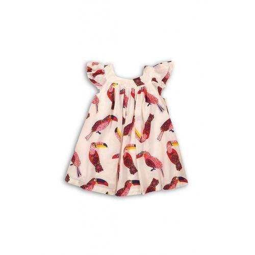 Sukienka niemowlęca 5k34af marki Minoti