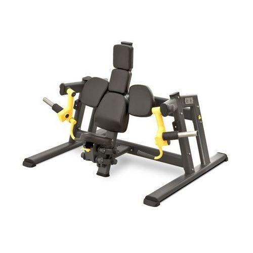Maszyna na wolne ciężary do ćwiczeń mięśni dwugłowych ramion NS 04 MasterSport