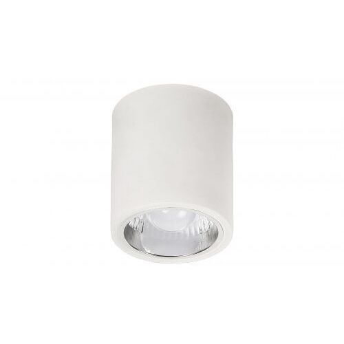 Rabalux 2484 - Lampa sufitowa DONALD 1xE27/60W/230V
