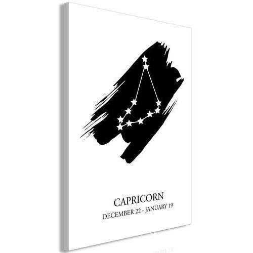 Artgeist Obraz - znaki zodiaku: koziorożec (1-częściowy) pionowy