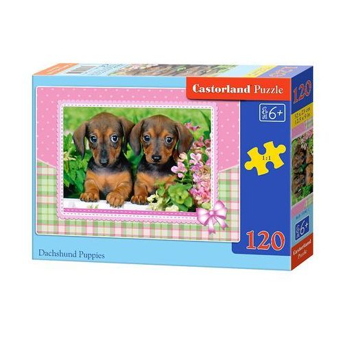 Castor Puzzle 120 dachshund puppies (5904438013142)