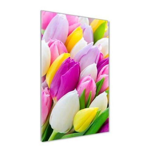 Foto obraz na szkle Kolorowe tulipany