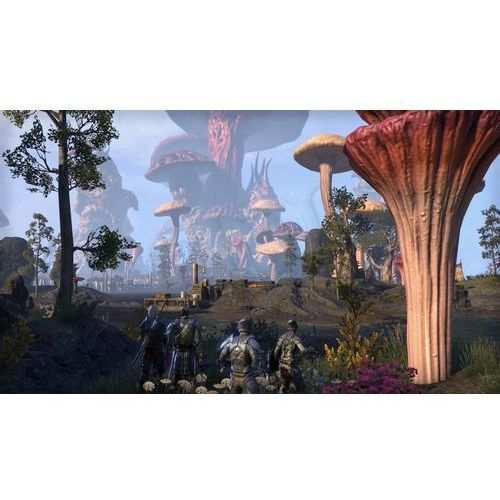 The Elders Scroll Online Morrowind (PS4)