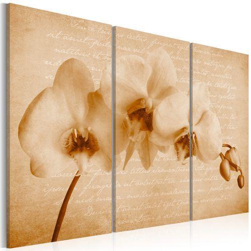 Obraz - orchidea (vintage) marki Artgeist