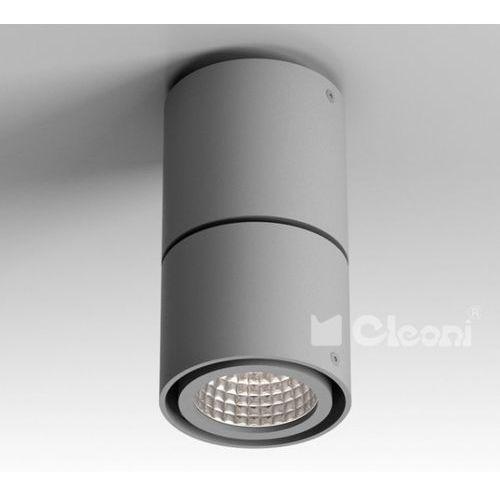 Lampa sufitowa tuz h3sm, t019h3sm+ marki Cleoni