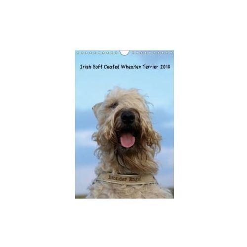 Irish Soft Coated Wheaten Terrier Kalender 2018 (Wandkalender 2018 DIN A4 hoch)