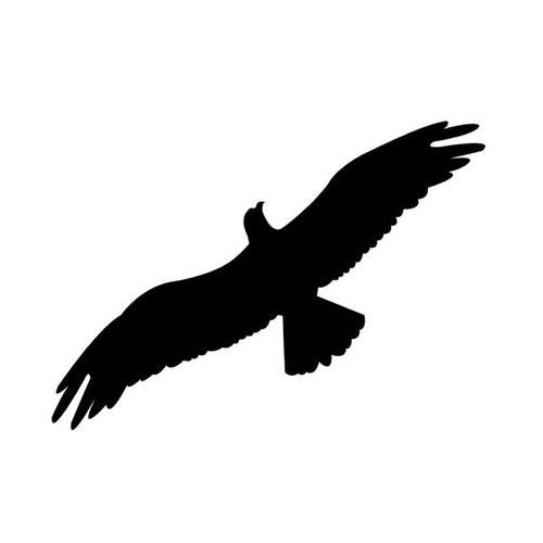 Naklejki na szyby, ptak drapieżny wzór l30. naklejka do odstraszania. marki Odstraszanie