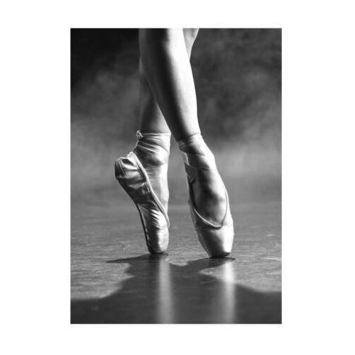 Art canvas Kanwa balet 50 x 70 cm (5901844208711)