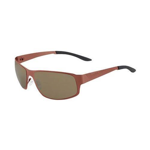 Okulary Słoneczne Bolle Auckland Polarized 12240