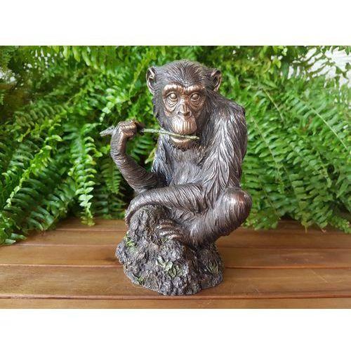 Niepowtarzalna figurka szympans (wu74873a4) marki Veronese