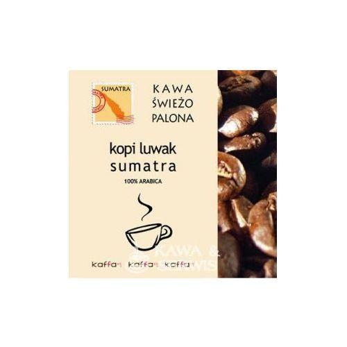 OKAZJA - Kawa Świeżo Palona Kopi Luwak Sumatra 50 g