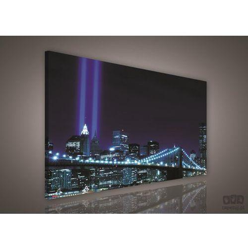 Consalnet Obraz nowy jork niebieskie światła miasta pp179