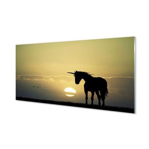 Obrazy akrylowe pole zachód słońca jednorożec marki Tulup.pl