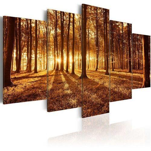 Obraz - bursztynowy las marki Artgeist