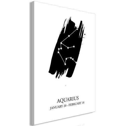 Artgeist Obraz - znaki zodiaku: wodnik (1-częściowy) pionowy