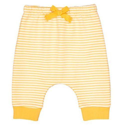 Spodnie niemowlęce w paski - 0 miesięcy - 2 lata oeko tex marki La redoute collections