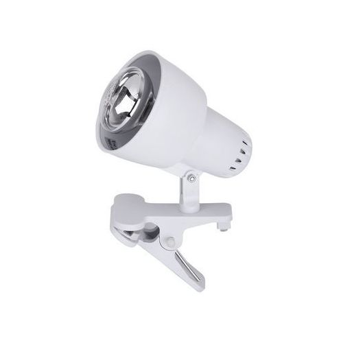 Lampa stołowa lampka klips Rabalux Clip 1x40W E14 biały 4356 (5998250343563)