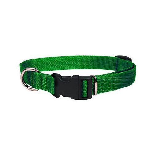 Chaba obroża taśmowa regulowana ozdobna kolor: zielony 20mm / 46cm