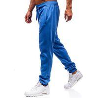 Spodnie męskie dresowe joggery jasnoniebieskie denley xw01, J.style