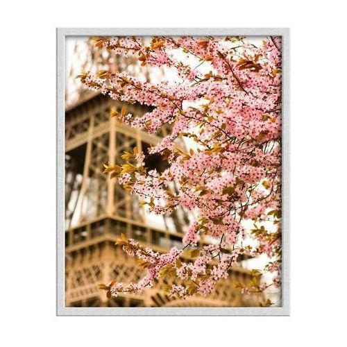Knor Obraz wieża eiffla 40 x 50 cm (5901554505179)