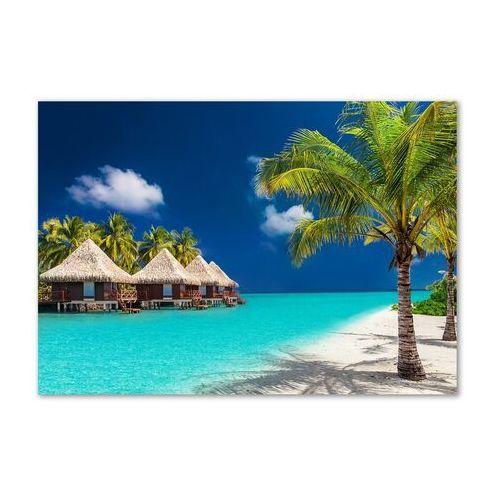 Foto obraz akryl Bungalowy Malediwy