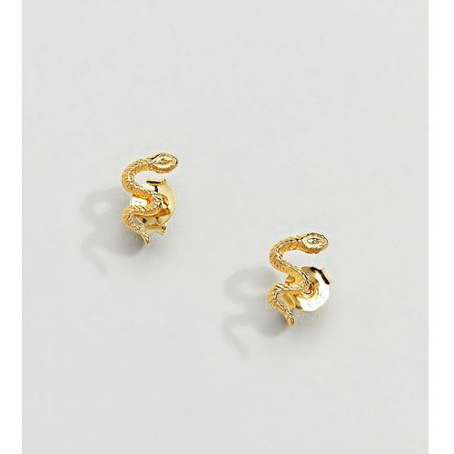 sterling silver gold plated snake stud earrings - gold marki Kingsley ryan