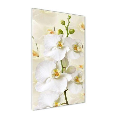 Foto obraz akryl do salonu Biała orchidea