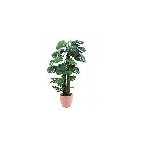 Europalms Splitphilodendron Giant, 160 cm, Sztuczna roślina