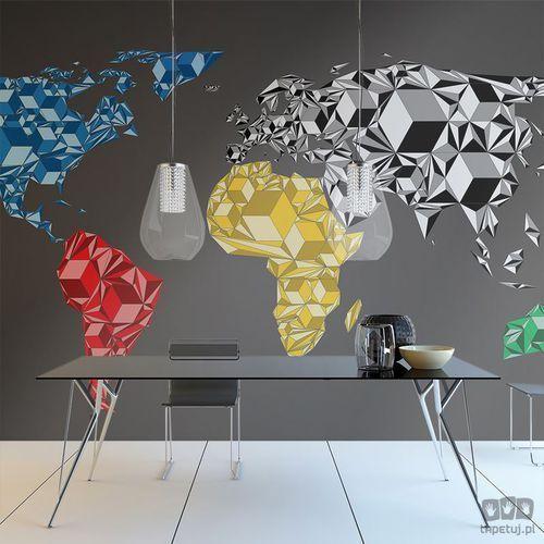 Fototapeta map of the world - colorful solids 10040910-54 marki Murando