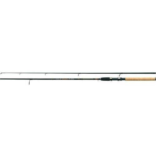 Jaxon Arcadia Spinning 300 cm / 20-60 g
