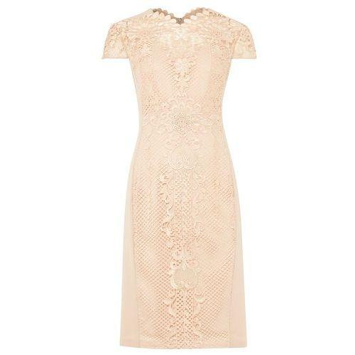 Phase Eight Macela Dress, kolor różowy
