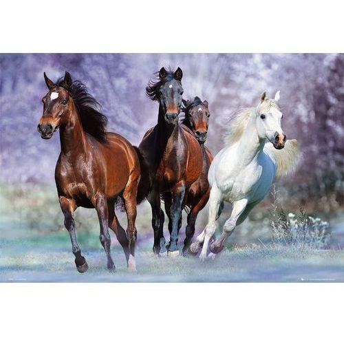 Gb Bob langrish - uciekające konie - plakat (5028486065707)