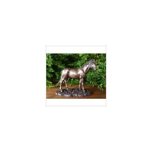 Koń na łące (wu76062a1) marki Veronese