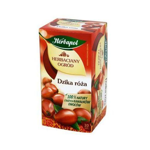 HERBAPOL 20x4g Herbaciany Ogród Dzika róża Herbata owocowo-ziołowa
