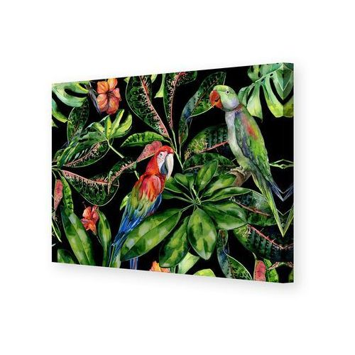 Dekoria Obraz na płótnie Tropical Birds, 50 x 35 cm